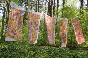 Marbling Fabric Workshop – Eliot School – Sunday, February 10
